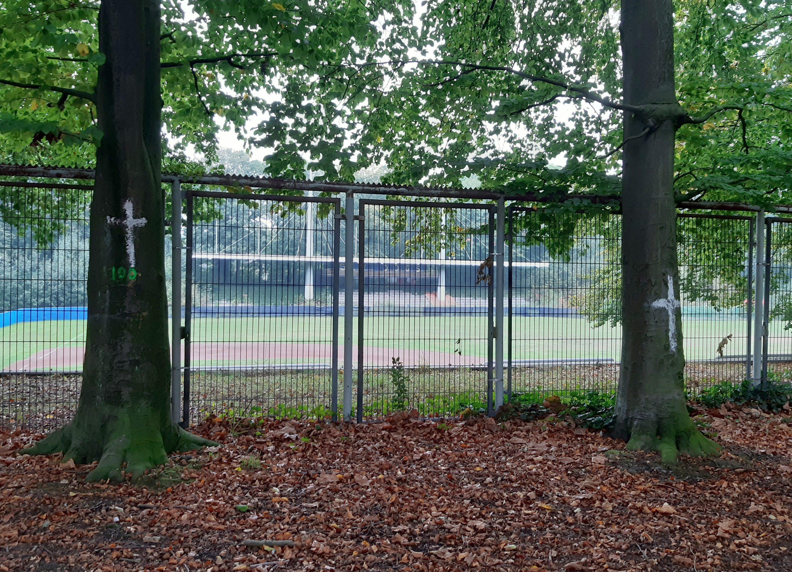 Die Bürgerinitiative markierte die Bäume mit weißen Kreuzen