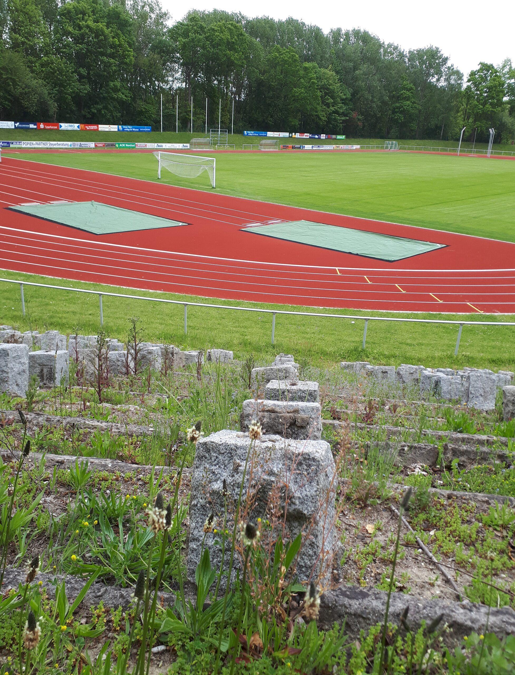 Ein Blick auf das Spielfeld