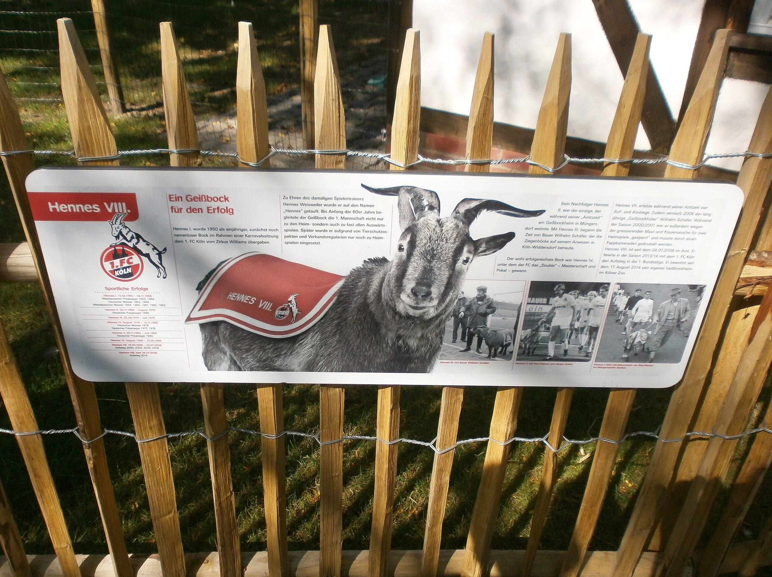 Infotafel am kleinen Geißbockheim im Kölner Zoo