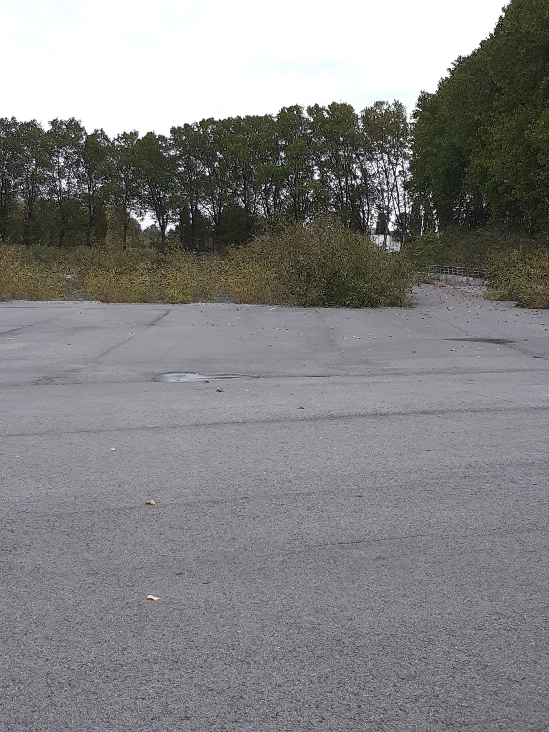 Der Rasen im Stadion Mathias Stinnes wurde durch Asphalt ersetzt